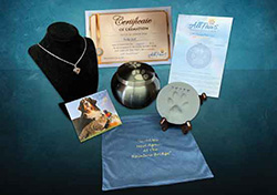 Loyal Companion Package # 1 $524-$656