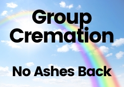 Group Cremation $119